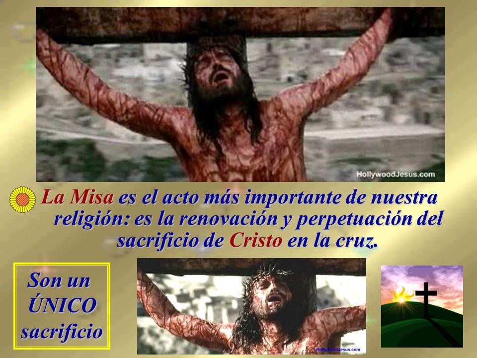 La Misa es el acto más importante de nuestra religión: es la renovación y perpetuación del sacrificio de Cristo en la cruz.