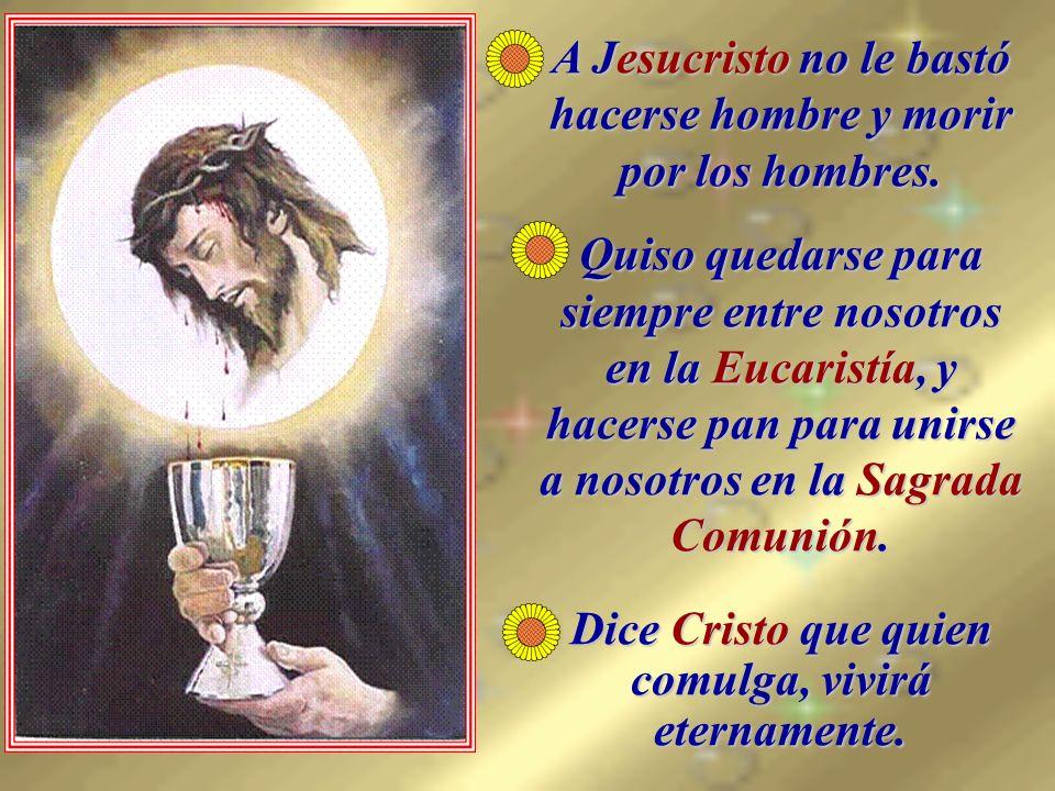 A Jesucristo no le bastó hacerse hombre y morir por los hombres.