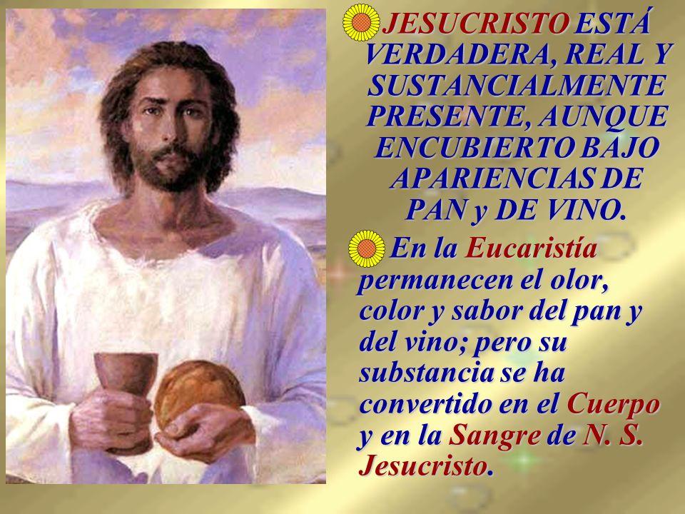 JESUCRISTO ESTÁ VERDADERA, REAL Y SUSTANCIALMENTE PRESENTE, AUNQUE ENCUBIERTO BAJO APARIENCIAS DE PAN y DE VINO.