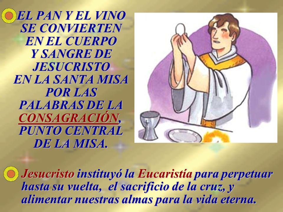 EL PAN Y EL VINO SE CONVIERTEN EN EL CUERPO Y SANGRE DE JESUCRISTO EN LA SANTA MISA POR LAS PALABRAS DE LA CONSAGRACIÓN, PUNTO CENTRAL DE LA MISA.