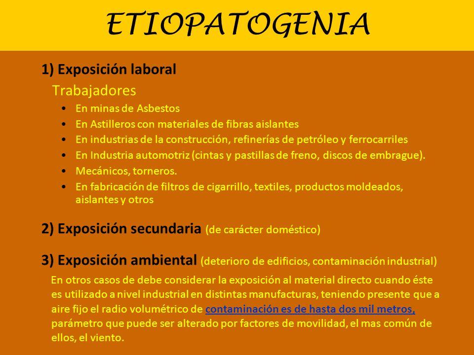 ETIOPATOGENIA 1) Exposición laboral Trabajadores