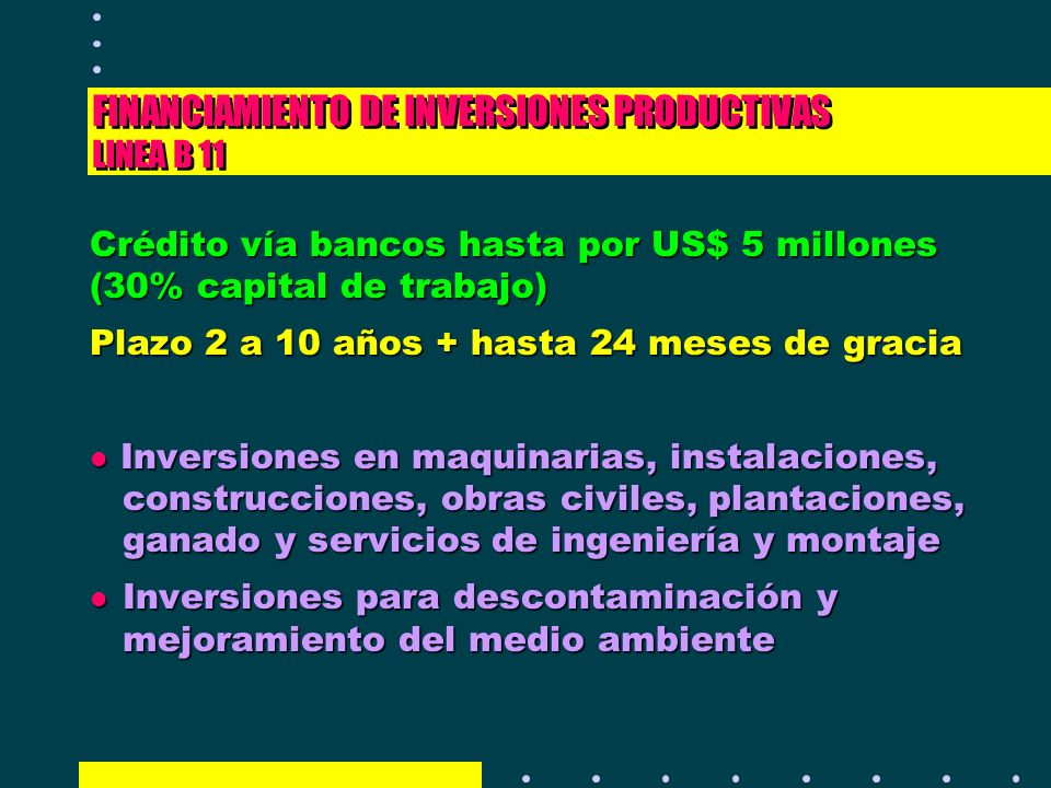 FINANCIAMIENTO DE INVERSIONES PRODUCTIVAS LINEA B 11