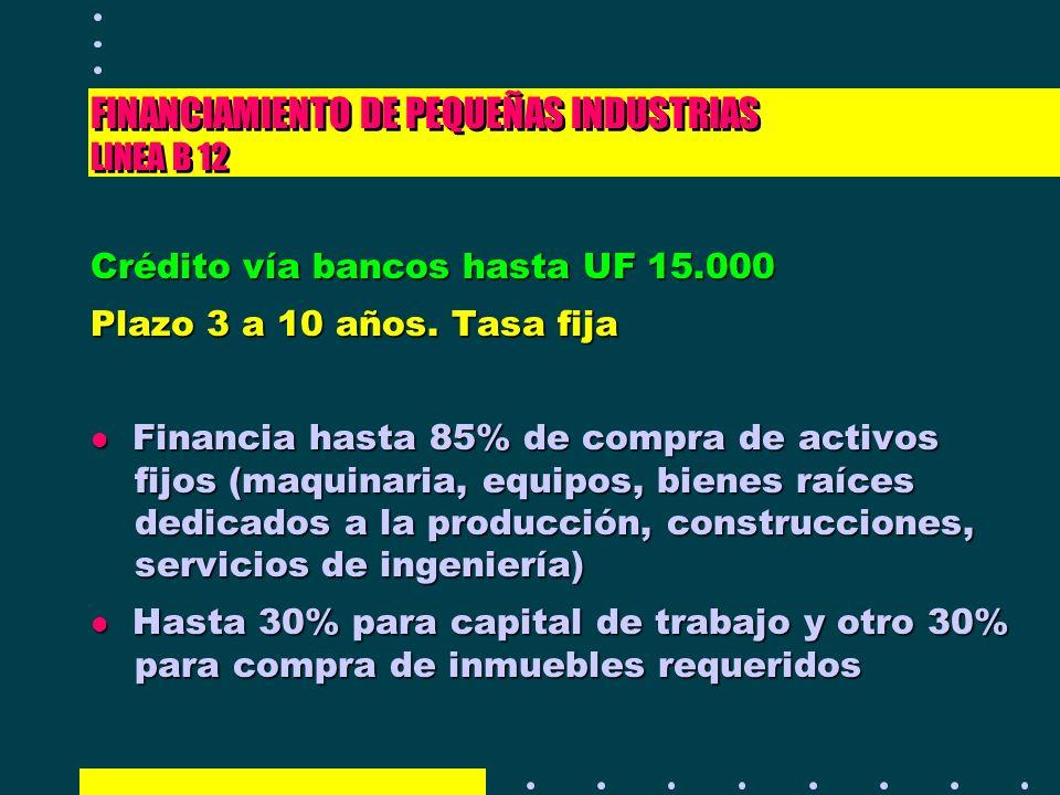 FINANCIAMIENTO DE PEQUEÑAS INDUSTRIAS LINEA B 12