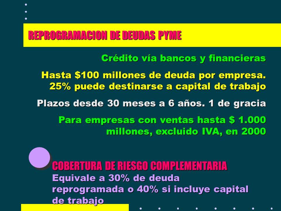 REPROGRAMACION DE DEUDAS PYME