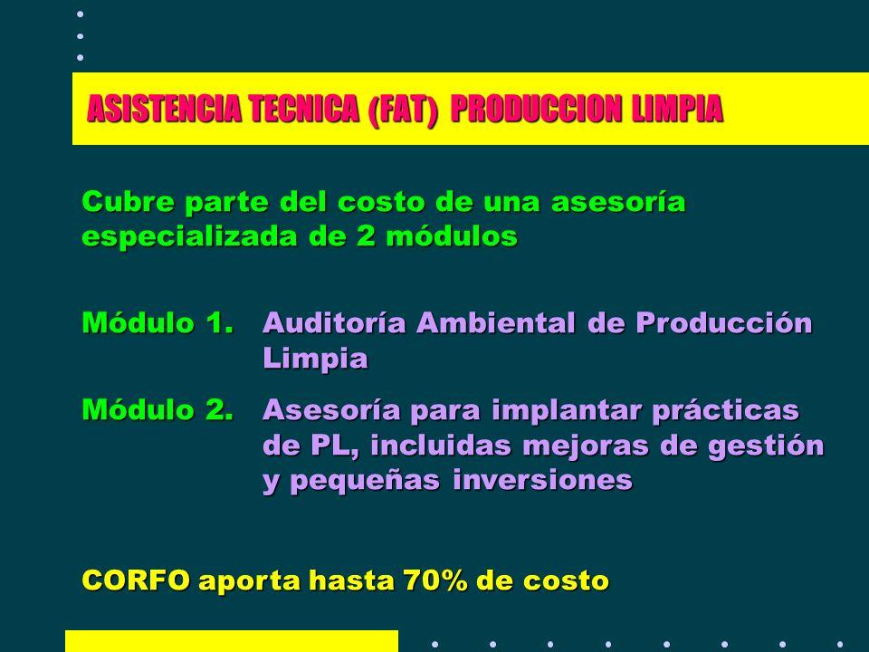 ASISTENCIA TECNICA (FAT) PRODUCCION LIMPIA