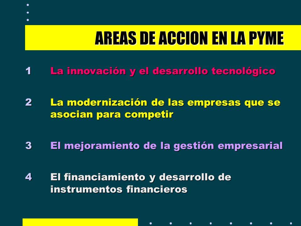AREAS DE ACCION EN LA PYME