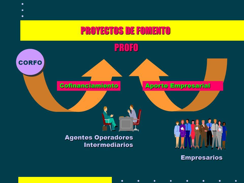 PROYECTOS DE FOMENTO PROFO CORFO Cofinanciamiento Aporte Empresarial