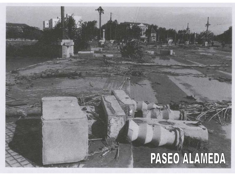 PASEO ALAMEDA