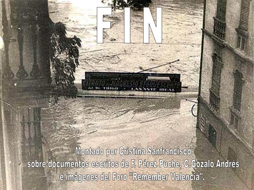 F I N Montado por Cristina Sanfrancisco
