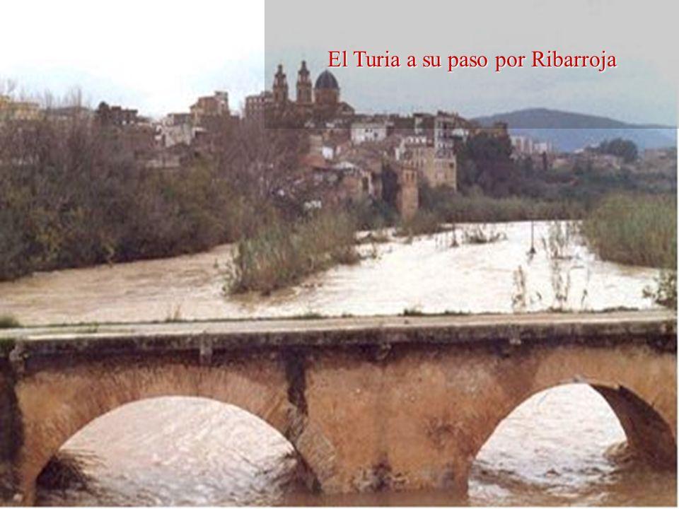 El Turia a su paso por Ribarroja