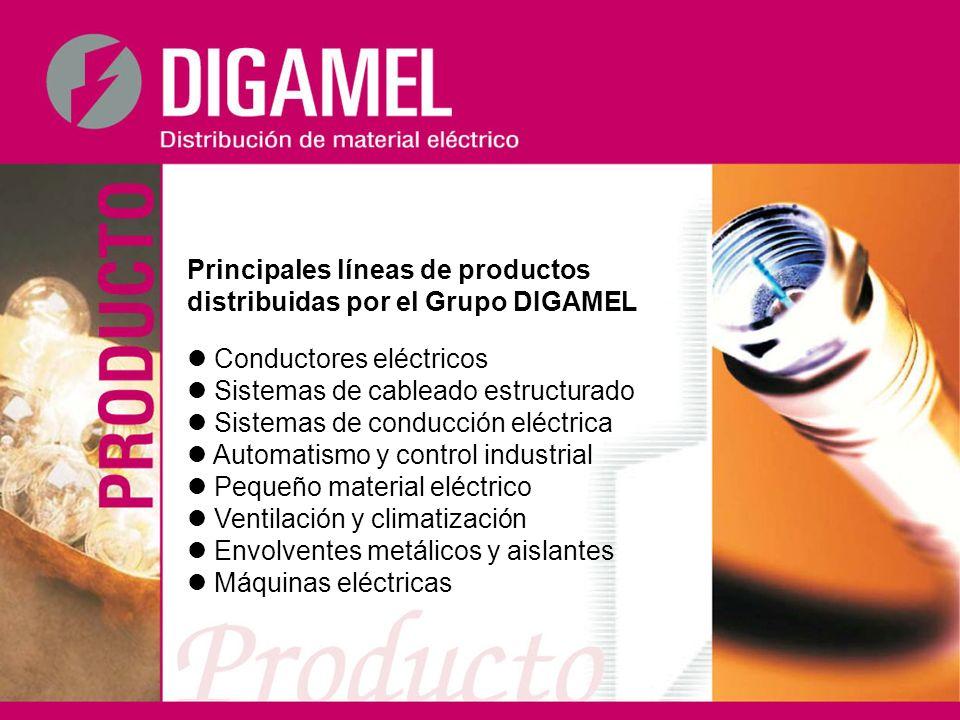 Principales líneas de productos distribuidas por el Grupo DIGAMEL