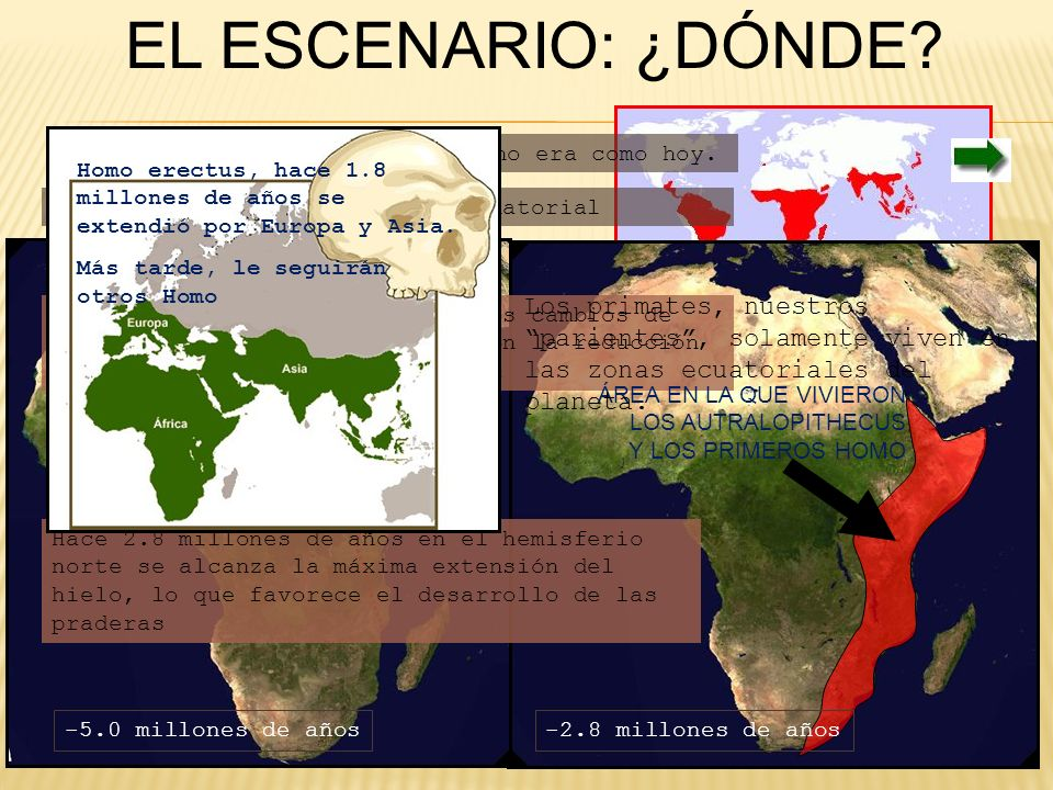 EL ESCENARIO: ¿DÓNDE Hace 5 millones de años África no era como hoy. Homo erectus, hace 1.8 millones de años se extendió por Europa y Asia.