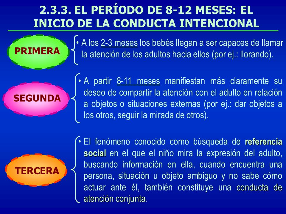 2.3.3. EL PERÍODO DE 8-12 MESES: EL INICIO DE LA CONDUCTA INTENCIONAL