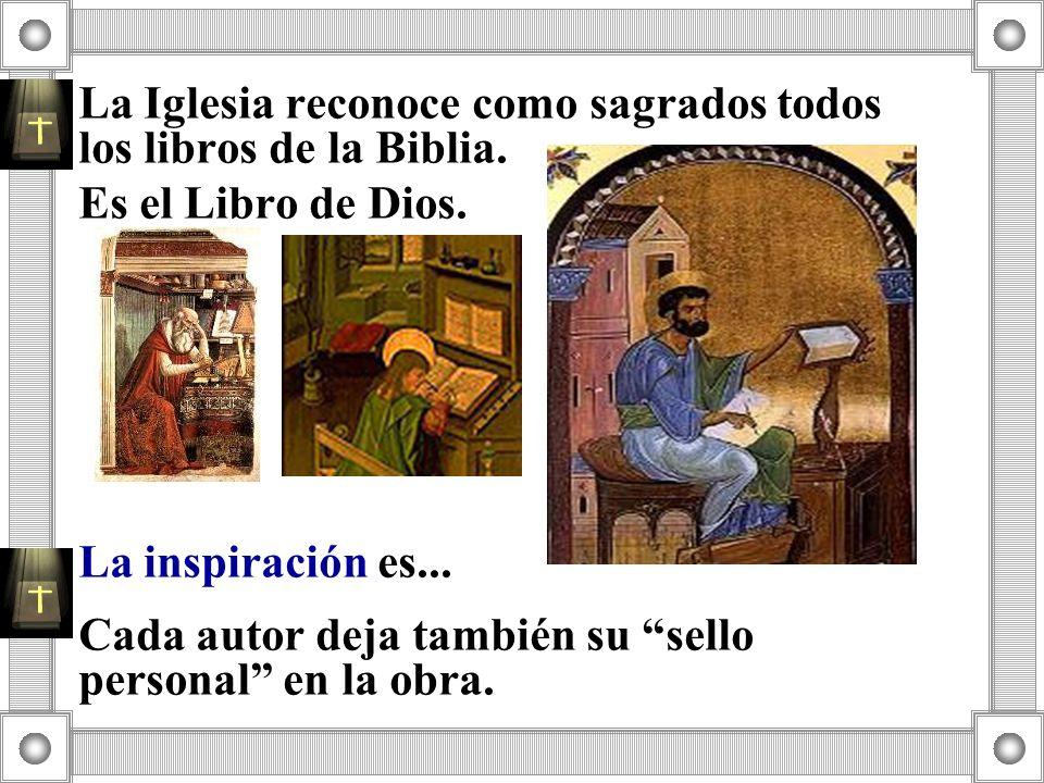 La Iglesia reconoce como sagrados todos los libros de la Biblia.