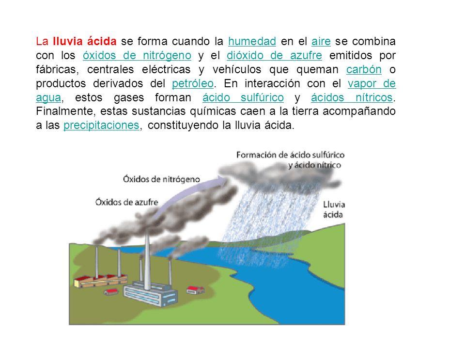 La lluvia ácida se forma cuando la humedad en el aire se combina con los óxidos de nitrógeno y el dióxido de azufre emitidos por fábricas, centrales eléctricas y vehículos que queman carbón o productos derivados del petróleo.