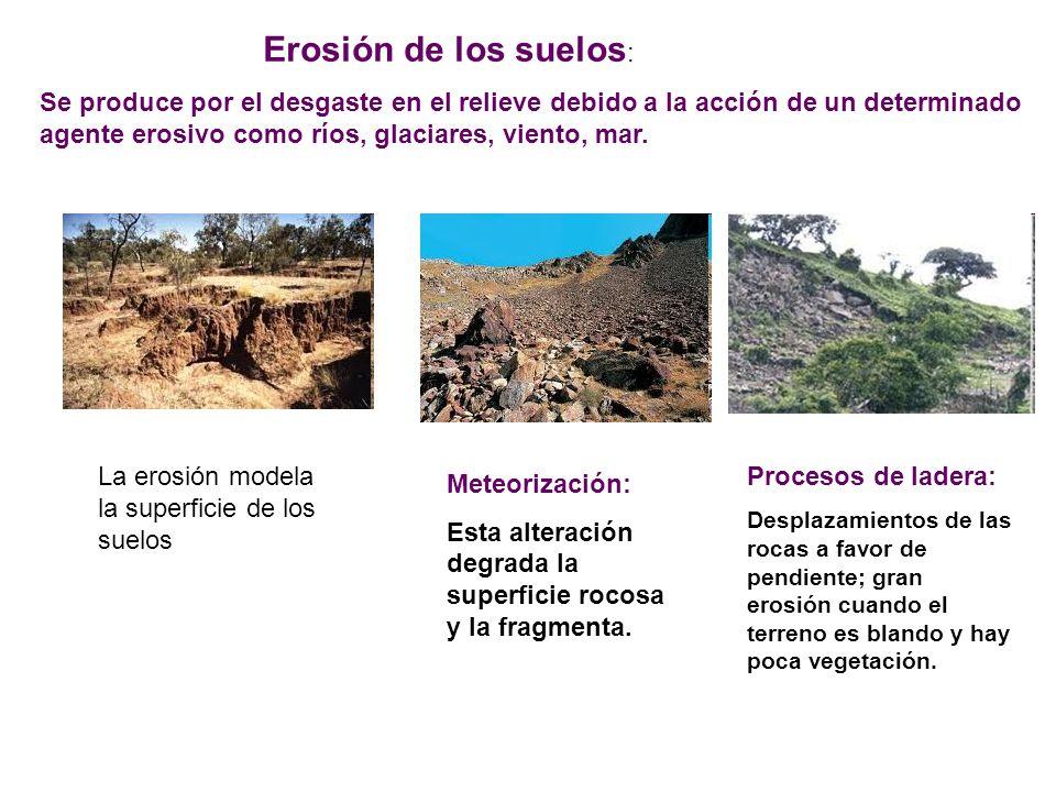 Erosión de los suelos: