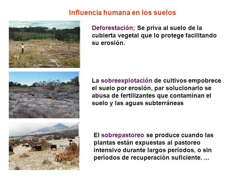Influencia humana en los suelos