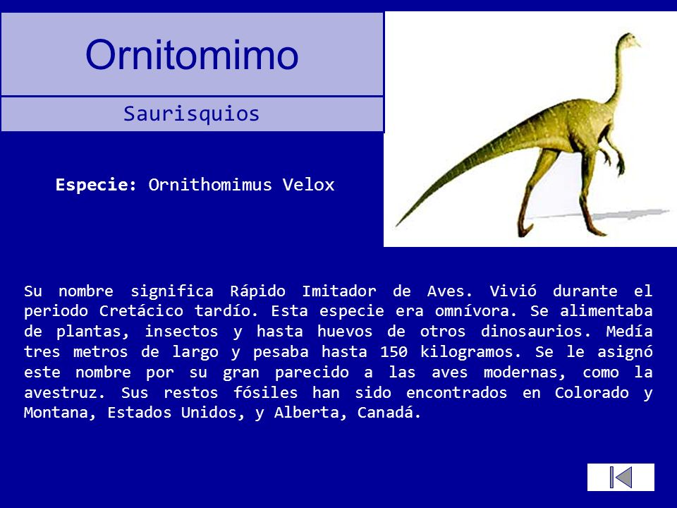Especie: Ornithomimus Velox