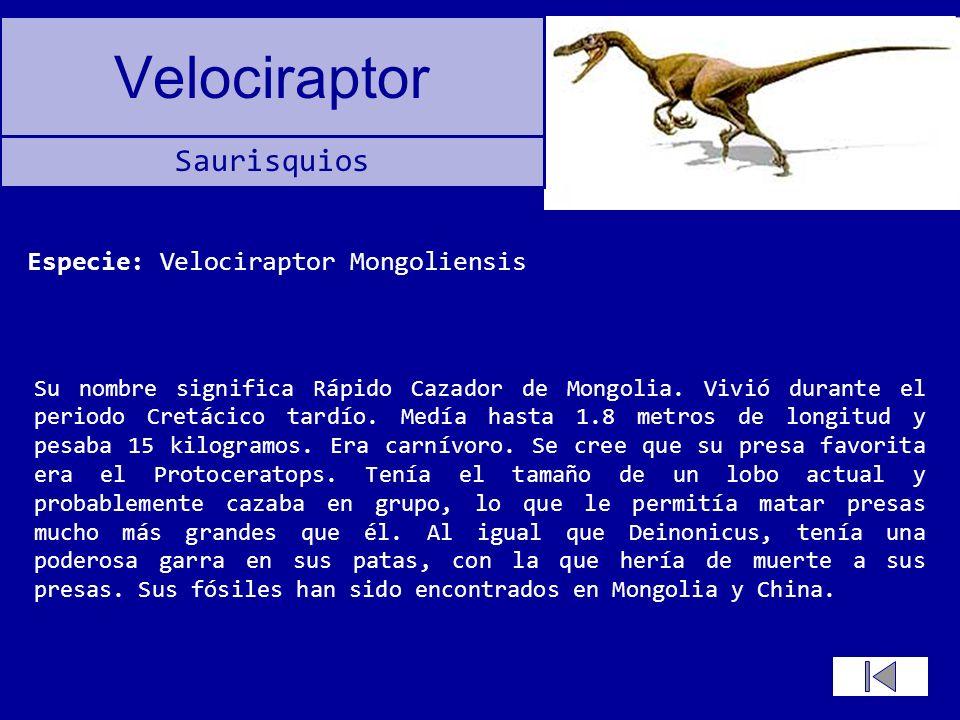 Especie: Velociraptor Mongoliensis