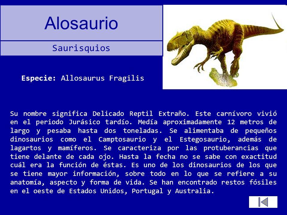 Especie: Allosaurus Fragilis