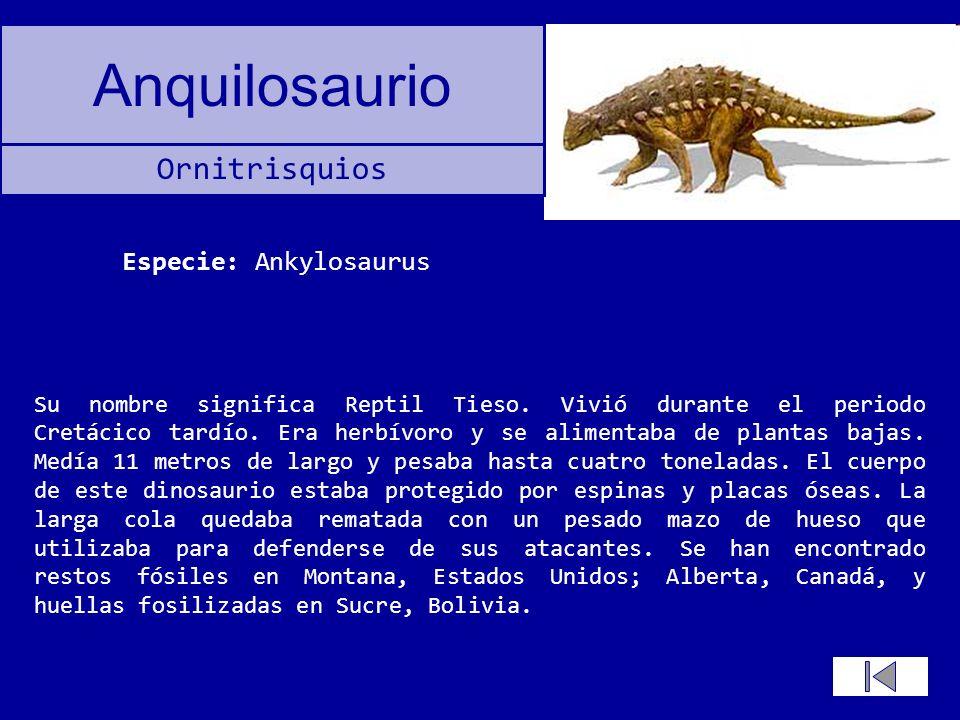 Especie: Ankylosaurus
