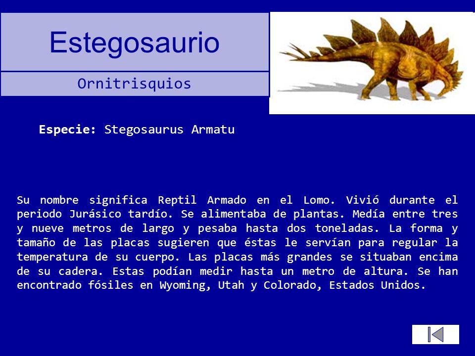 Especie: Stegosaurus Armatu