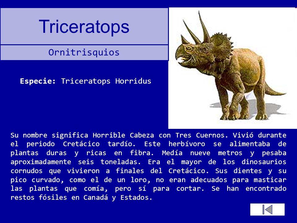 Especie: Triceratops Horridus