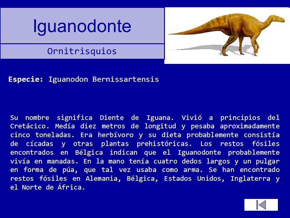 Especie: Iguanodon Bernissartensis
