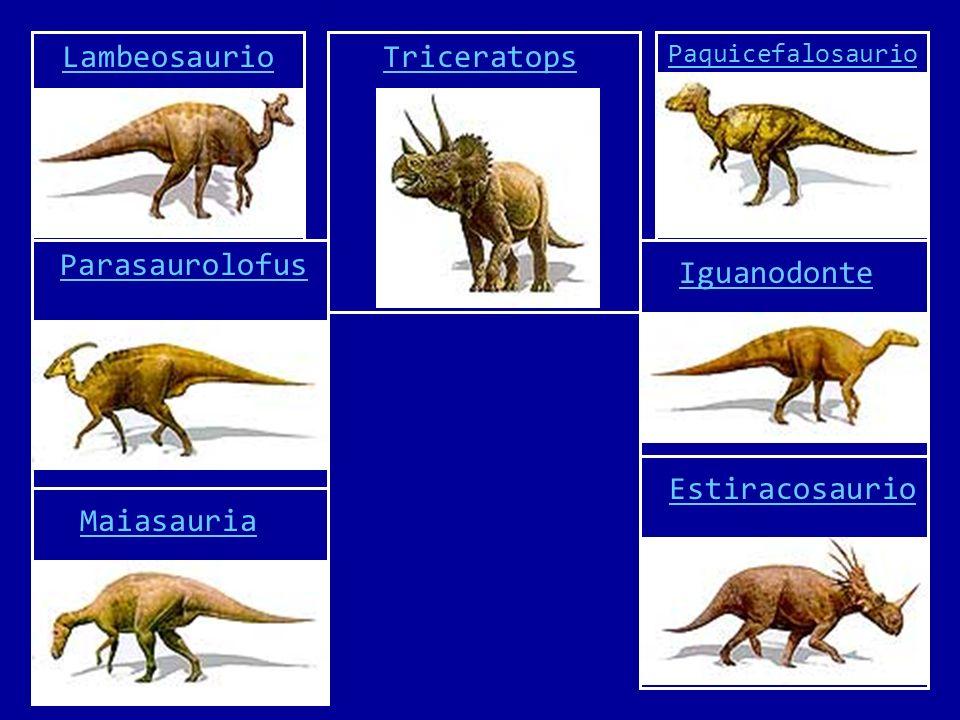 Lambeosaurio Triceratops Parasaurolofus Iguanodonte Estiracosaurio