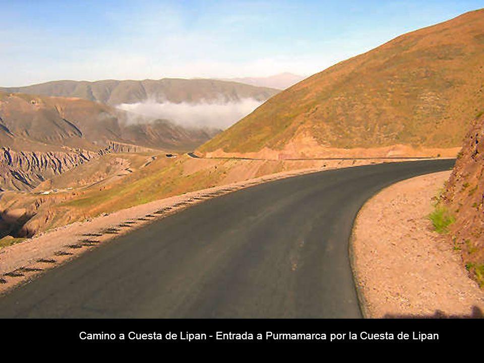 Camino a Cuesta de Lipan - Entrada a Purmamarca por la Cuesta de Lipan