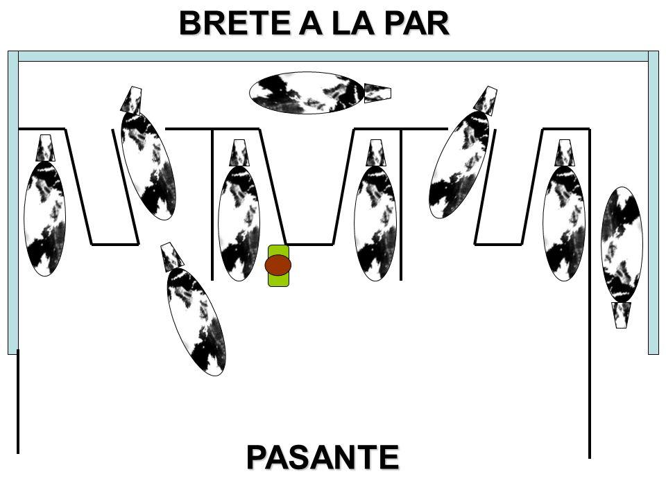 BRETE A LA PAR PASANTE