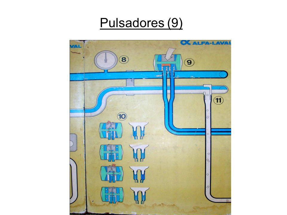 Pulsadores (9)