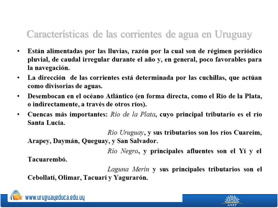 Características de las corrientes de agua en Uruguay