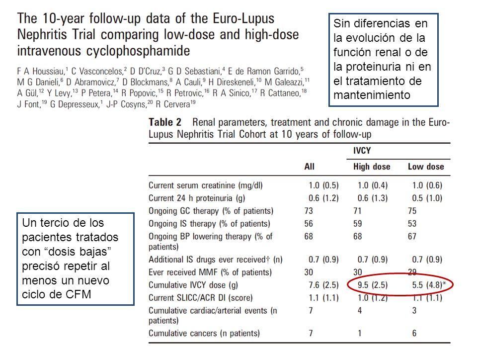 Sin diferencias en la evolución de la función renal o de la proteinuria ni en el tratamiento de mantenimiento