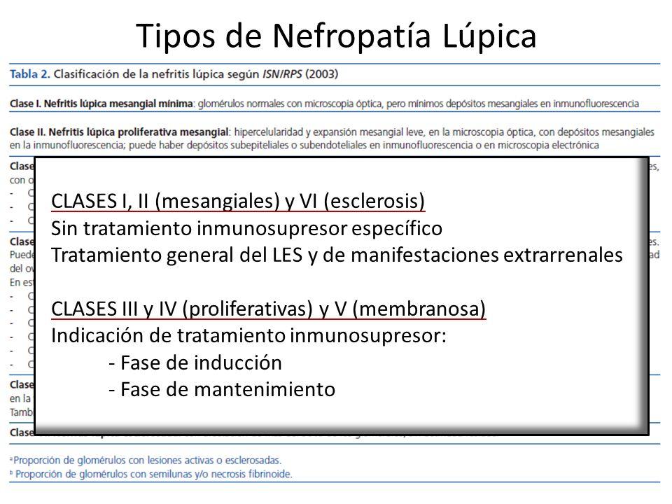 Tipos de Nefropatía Lúpica