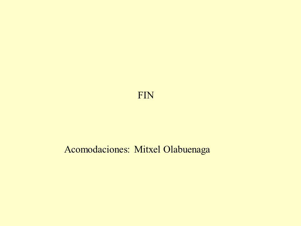 FIN Acomodaciones: Mitxel Olabuenaga