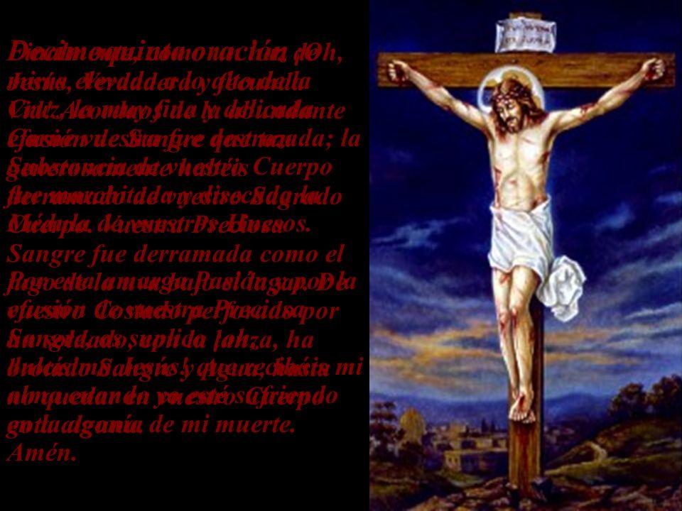 Decimoquinta oración ¡Oh, Jesús, Verdadera y fecunda Vid