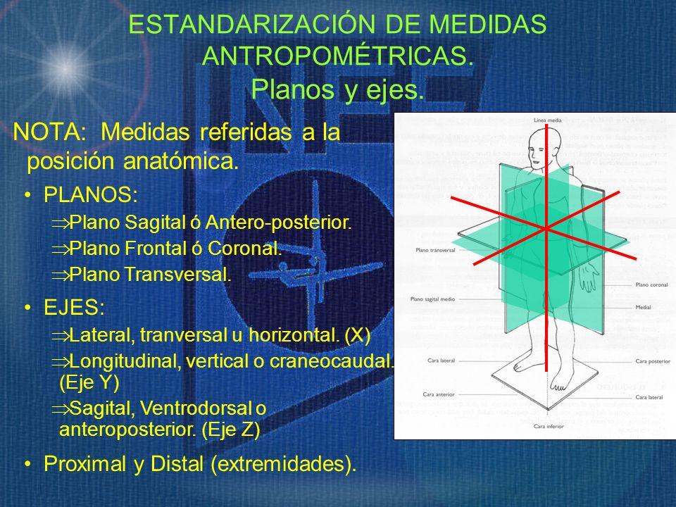 ESTANDARIZACIÓN DE MEDIDAS ANTROPOMÉTRICAS. Planos y ejes.