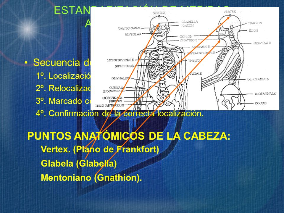 ESTANDARIZACIÓN DE MEDIDAS ANTROPOMÉTRICAS. Puntos Anatómicos.