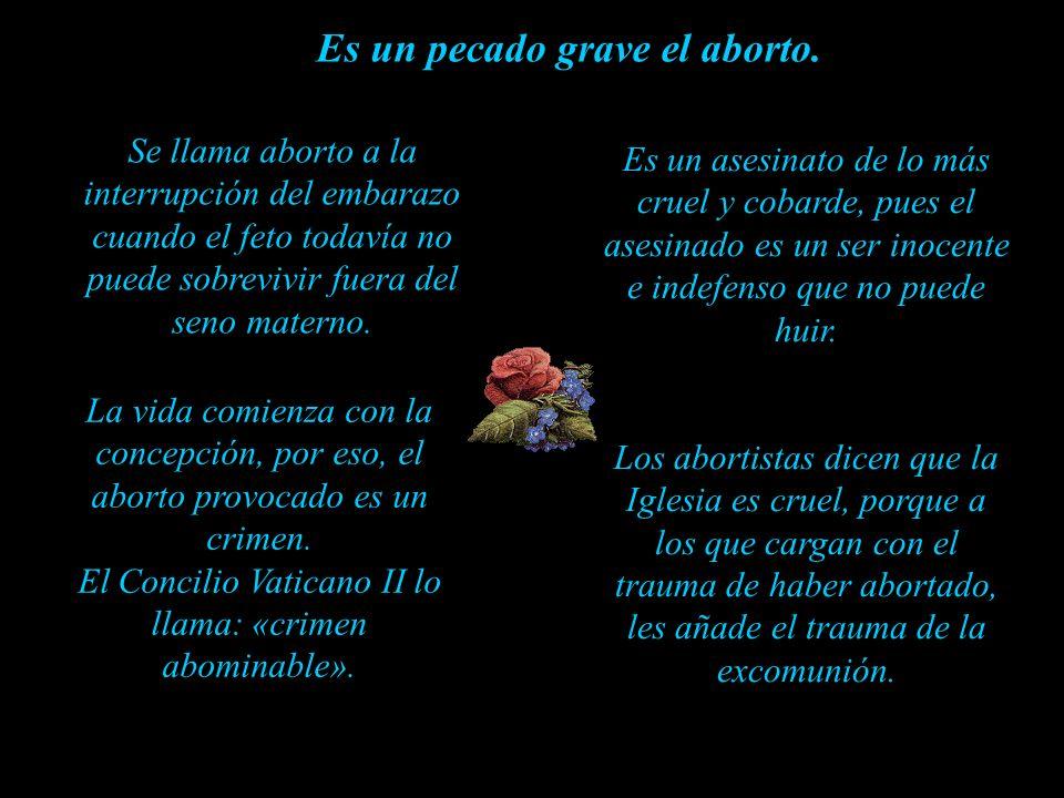 Es un pecado grave el aborto.