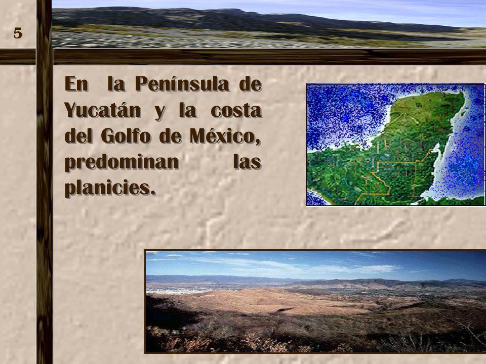 5 En la Península de Yucatán y la costa del Golfo de México, predominan las planicies.