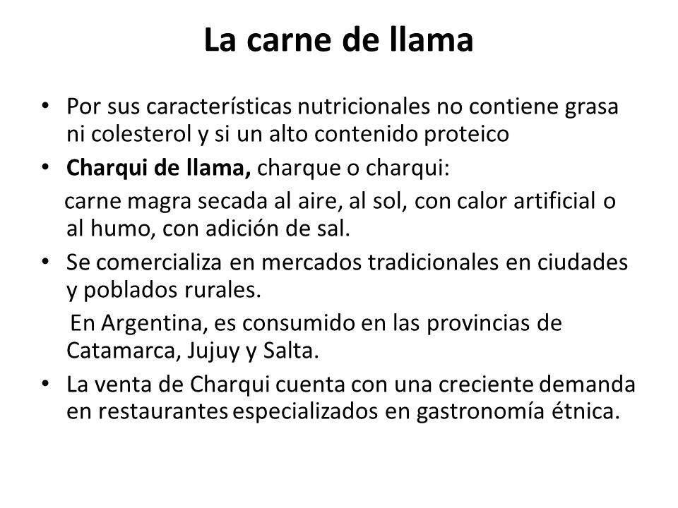La carne de llama Por sus características nutricionales no contiene grasa ni colesterol y si un alto contenido proteico.