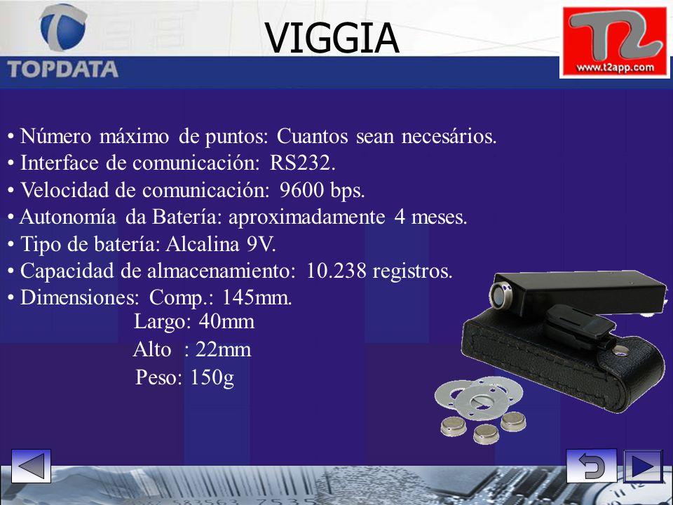 VIGGIA