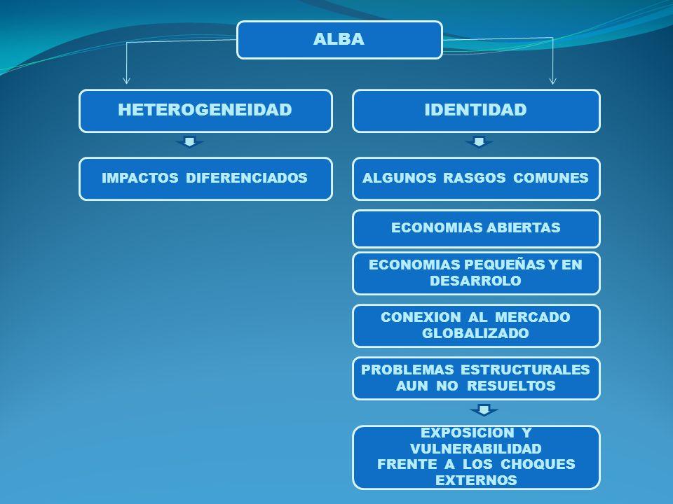 ALBA HETEROGENEIDAD IDENTIDAD IMPACTOS DIFERENCIADOS