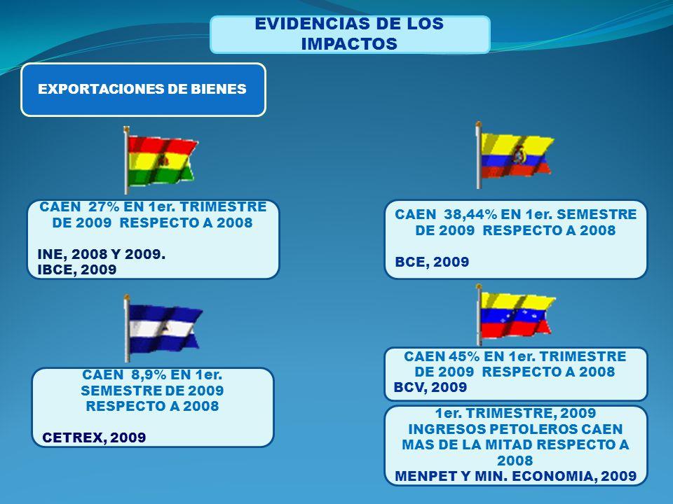 EVIDENCIAS DE LOS IMPACTOS