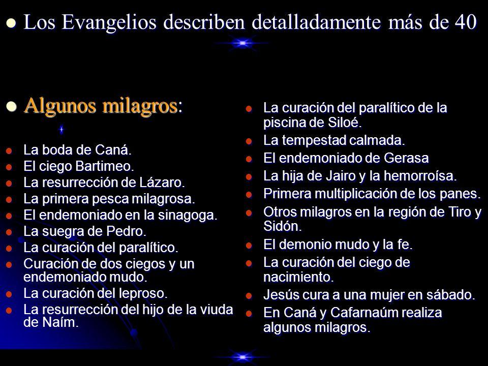 Los Evangelios describen detalladamente más de 40