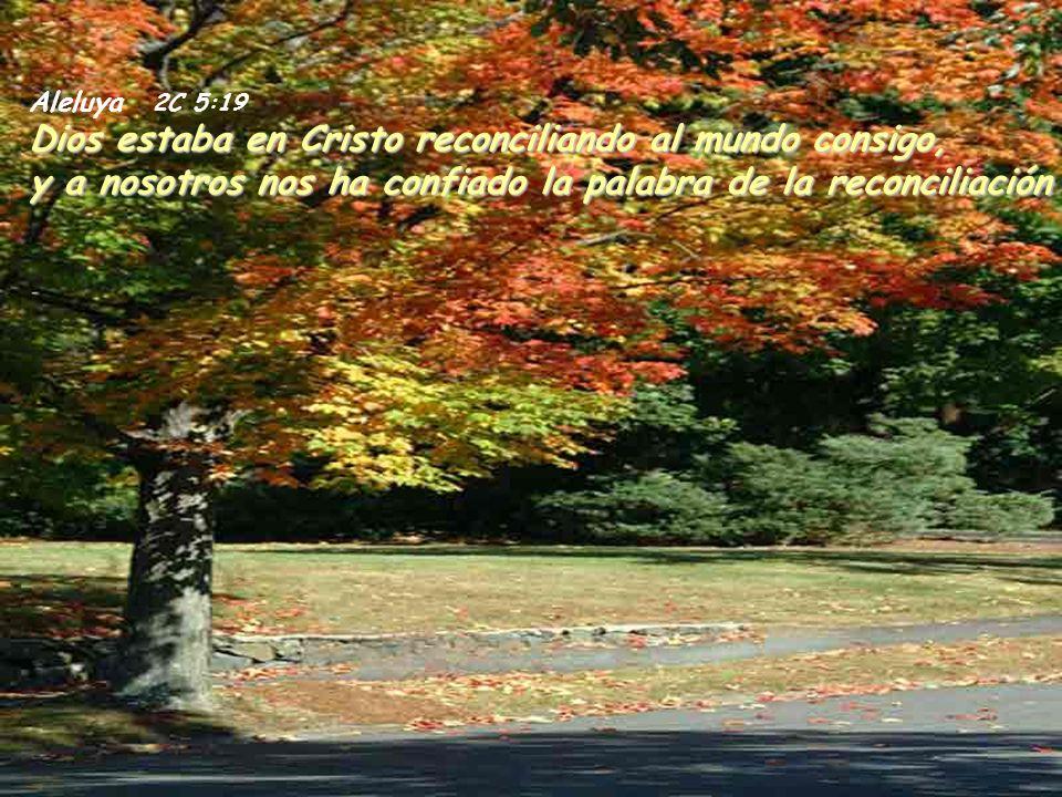 Aleluya 2C 5:19 Dios estaba en Cristo reconciliando al mundo consigo, y a nosotros nos ha confiado la palabra de la reconciliación.