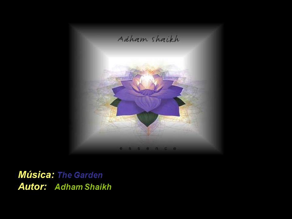 Música: The Garden Autor: Adham Shaikh