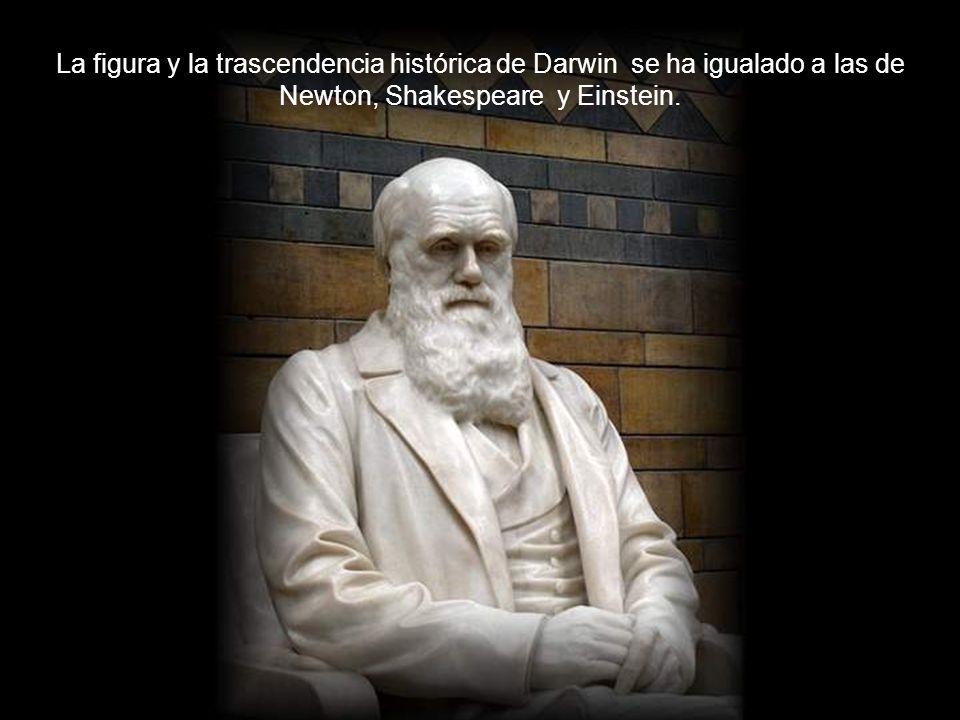 La figura y la trascendencia histórica de Darwin se ha igualado a las de Newton, Shakespeare y Einstein.