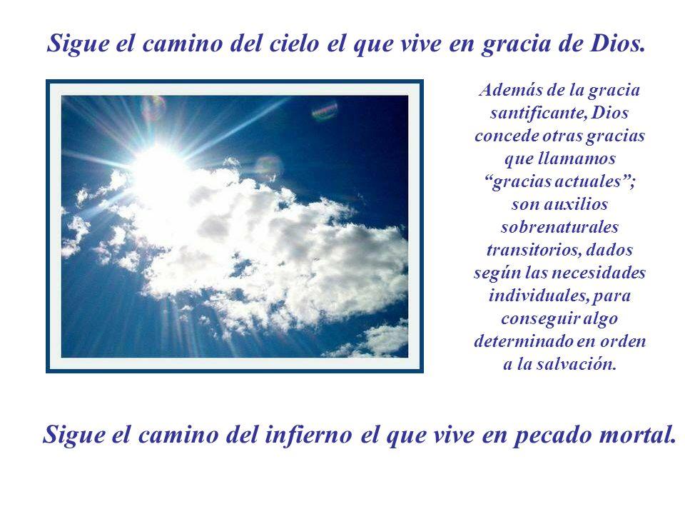 Sigue el camino del cielo el que vive en gracia de Dios.
